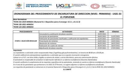 CRONOGRAMA DEL PROCEDIMIENTO DE ENCARGATURA DE DIRECCION (NIVEL  PRIMARIA) – UGEL 01 EL PORVENIR.