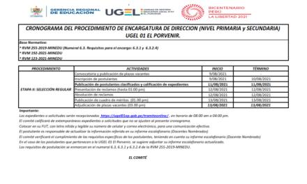 CRONOGRAMA DEL PROCEDIMIENTO DE ENCARGATURA DE DIRECCION (NIVEL PRIMARIA y SECUNDARIA)  UGEL 01 EL PORVENIR.