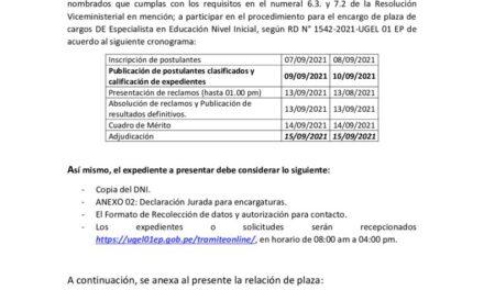 CONVOCATORIA DE ENCARGATURA DE PLAZA DE CARGO DE ESPECIALISTA EN EDUCACION NIVEL INICIAL (I ETAPA: SELECCIÓN REGULAR)