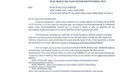 SOLICITA INFORME Y SISTEMATIZACIÓN DE BUENA PRÁCTICA EN EL MARCO DEL PLAN LECTOR INSTITUCIONAL 2021